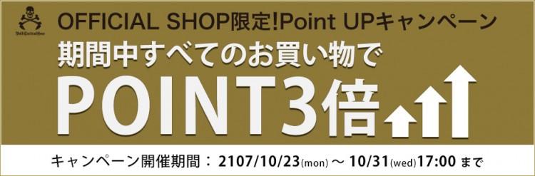 bnr310_point3.jpgv